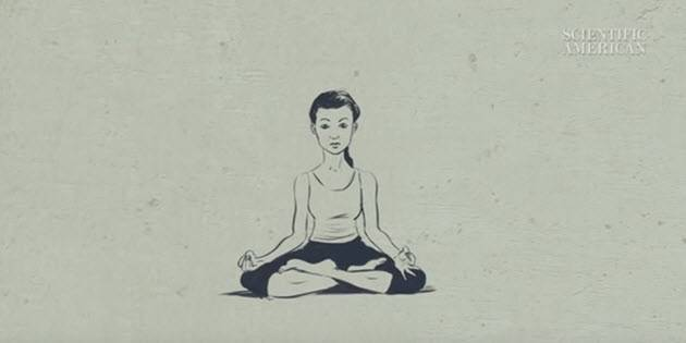 How Does Meditation Change the Brain? (video)