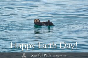 photo of otter floating on its back with text happy Earth Day